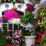 primavera-patios-andaluces-1