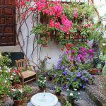 primavera-patios-andaluces-4