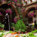 primavera-patios-andaluces-6