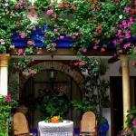 primavera-patios-andaluces-7
