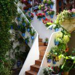 primavera-patios-andaluces-8