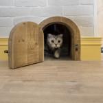un-loft-para-que-tu-gato-disfrute-7