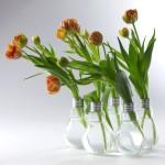jarrones-funcionales-y-decorativos-8